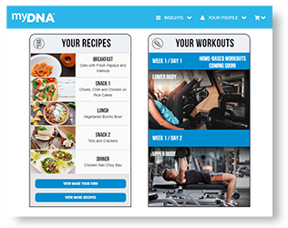 Fitness & Meal Plans