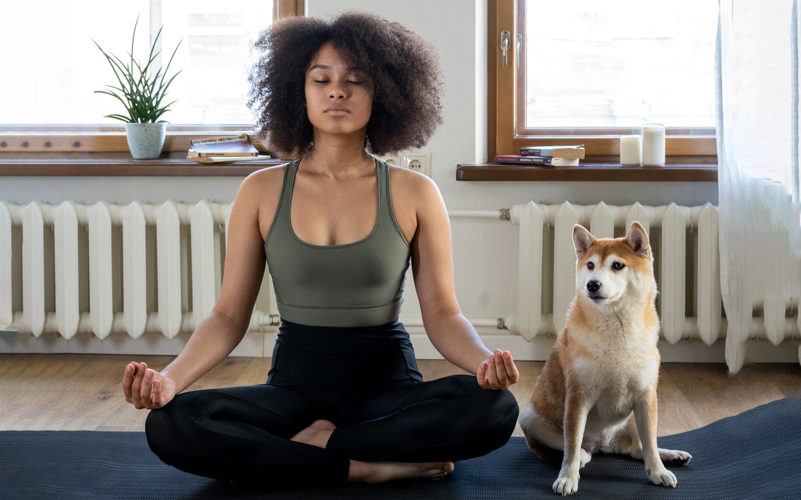 a woman at home in lockdown meditating on a yoga mat with a dog